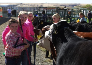 Anna and part of her 4H group, all of which were in the championship round, McKenna, Marlo and McCall Lovejoy.