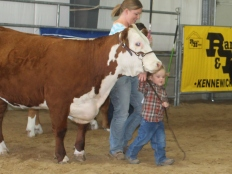 Tesa showing Princess. Princess is a great heifer owned by BB Cattle Co that they bought from Cameron Mulroanie.