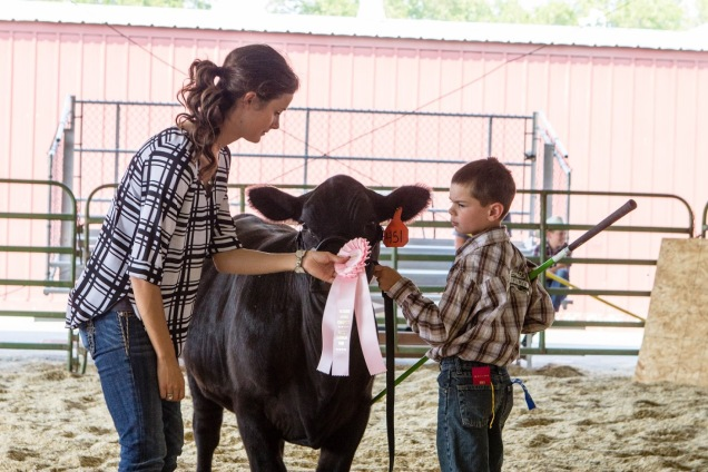Kade getting Reserve Champion Angus heifer with Dark Knight, she was the Jr heifer champion. She is a Capitalist.