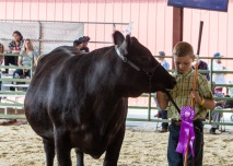 Kaine with Grand Champion Angus hiefer, she is from BB Cattle Co and is a Ten X daughter.