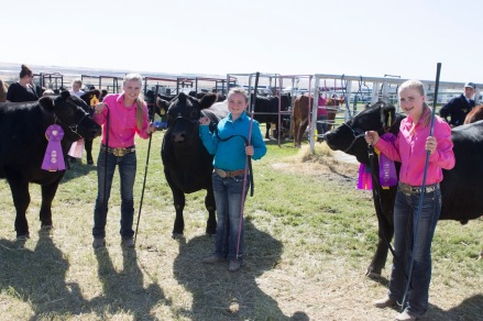 Anna and the Lovejoy twins at CBJLS. Anna's steer was 7th in the steer of Merit carcass competition.
