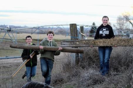 Building fence Feb 2020-1