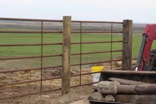 Fence April 2020