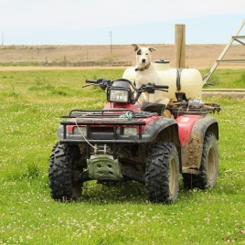 Andy on four wheeler June 2020